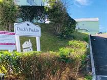 Homes for Rent/Lease in Hamilton Parish, Hamilton Parish $3,200 monthly
