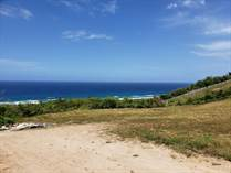 Lots and Land for Sale in Guayabo, Isabela, Puerto Rico $119,800