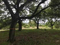 Lots and Land Sold in Vintage Oaks, New Braunfels, Texas $139,900