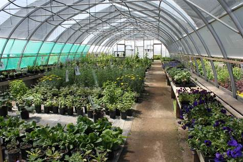 11+Commercial Greenhouse For Sale
