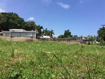 Lots and Land for Sale in Bo Hato Arriba, Arecibo, Puerto Rico $31,900