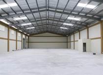 Commercial Real Estate for Sale in El Ejecutivo, Bavaro, La Altagracia $1,000