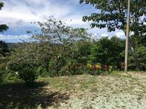 Lots and Land for Sale in Golfito, Puntarenas $425,000