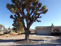 Homes for Sale in Yucca Valley, California $123,500