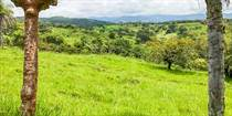 Farms and Acreages for Sale in Esparza, Puntarenas $1,450,000