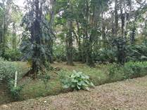 Lots and Land for Sale in Puerto Limon, Limón $70,000