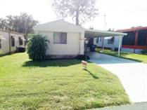 Homes for Sale in Pine Ridge Estates, Lakeland, Florida $12,500
