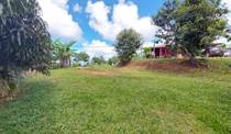 Lots and Land for Sale in Tinamastes, Puntarenas $95,000