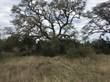Lots and Land Sold in Vintage Oaks, New Braunfels, Texas $69,900