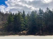 Lots and Land for Sale in Harbour Grace, Newfoundland and Labrador $24,900