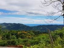 Lots and Land for Sale in Platanillo, Puntarenas $65,000