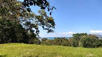 Lots and Land for Sale in Pavones, Puntarenas $165,000