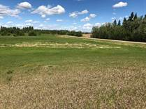 Lots and Land for Sale in Rural St. Paul, Alberta $374,900