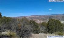 Lots and Land for Sale in New Mexico, Mimbres, New Mexico $36,500