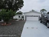 Homes for Sale in Brookridge, Florida $162,000