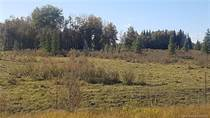 Farms and Acreages for Sale in Alberta, Rural Clearwater County, Alberta $329,000