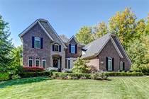 Homes for Sale in Michigan, Northville, Michigan $824,900