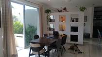 Homes for Rent/Lease in Playacar Fase 2, Quintana Roo $1,300 monthly
