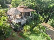 Homes Sold in Dominicalito, Puntarenas $345,000