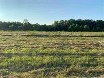 Commercial Real Estate for Sale in Cabot, Arkansas $349,000