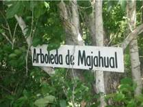 Homes for Sale in Mahahual, Quintana Roo $50,000