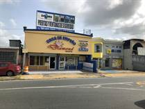 Commercial Real Estate for Sale in Miraflores, Bayamon, Puerto Rico $295,000