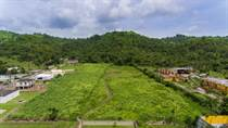 Lots and Land for Sale in Bo. Calabaza, Yabucoa, Puerto Rico $215,000