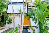 Homes for Sale in Playa del Carmen, Quintana Roo $7,600,000