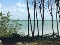 Lots and Land for Sale in Ocean Frontage, Corozal $380,000