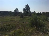 Lots and Land for Sale in Beaver Dam Village, Panguitch, Utah $55,900