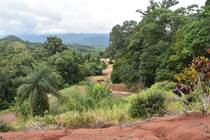 Farms and Acreages for Sale in Golfito, Puntarenas $695,000