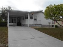 Homes for Sale in Brookridge, Brooksville, Florida $155,553