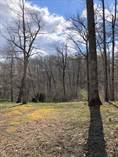 Lots and Land for Sale in Russell Springs, Kentucky $28,000