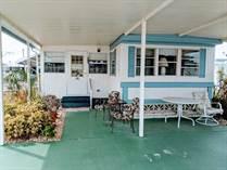 Homes for Sale in Hawaiian Isles, Ruskin, Florida $17,000