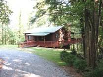 Homes for Sale in Morganton, Georgia $134,500
