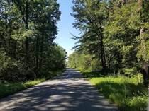 Homes for Sale in Towamensing Township, Towamensing, Pennsylvania $42,500