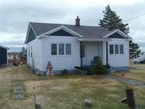 Homes for Sale in Newfoundland, Small Point, Newfoundland and Labrador $99,000