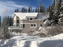 Homes for Sale in Mt. Baldy, Oliver, British Columbia $599,900