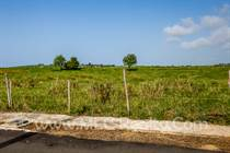Lots and Land for Sale in Bo Yeguada, Camuy, Puerto Rico $45,000