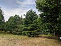 Lots and Land for Sale in Beaverton, Michigan $54,900