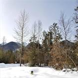Lots and Land for Sale in Fernie Alpine Resort Ski Hill, Fernie, British Columbia $299,000