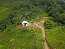 Homes for Sale in Tinamastes, Puntarenas $199,000