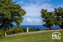 Lots and Land Sold in Bo Membrillo, Camuy, Puerto Rico $79,500