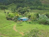 Farms and Acreages for Sale in Platanillo, Puntarenas $699,000