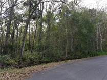 Lots and Land for Sale in Clermont, Florida $123,500
