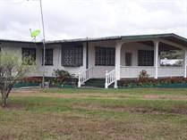Homes for Sale in Centro Ciudad, Volcan, Chiriquí  $250,000
