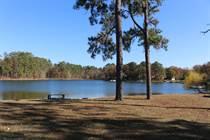 Lots and Land Sold in Gilbert, South Carolina $235,000