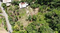 Lots and Land for Sale in Siquirres , Limón $37,000