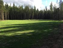 Lots and Land for Sale in La Corey, Bonnyville No. 87, Alberta $114,900