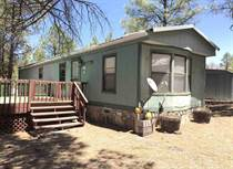 Homes for Sale in Grant County, Lake Roberts, New Mexico $64,000